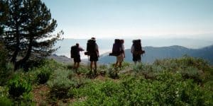Safety Tips for Hikers
