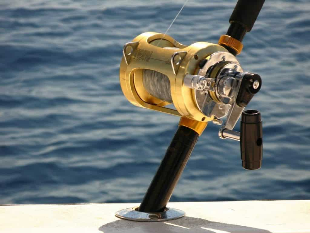 Features to Look for in the Best Spinning Reel