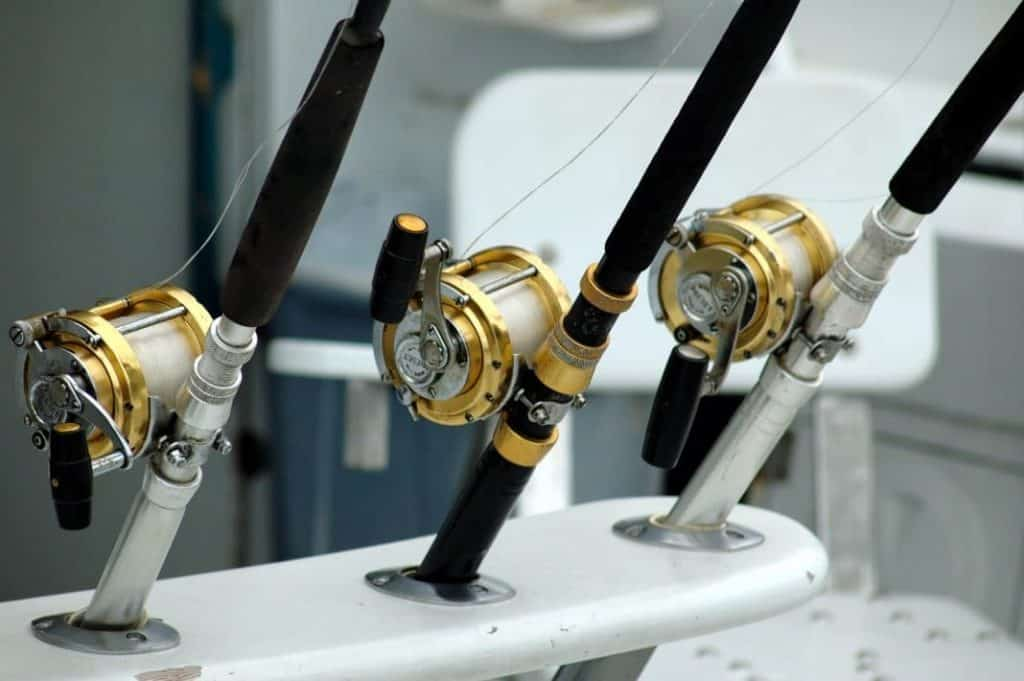Other Types of Fishing Reels