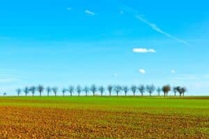 How Big Is 10 Acres of Land?